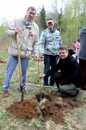 Аллея, Россоны, Посади дерево